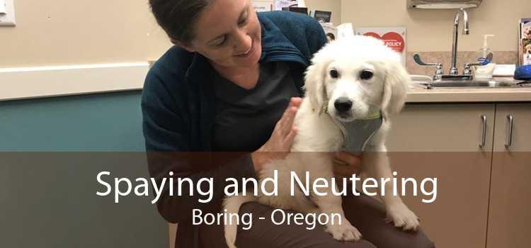 Spaying and Neutering Boring - Oregon