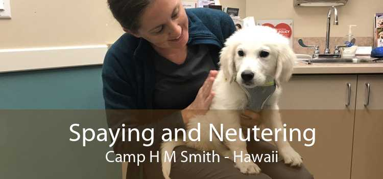 Spaying and Neutering Camp H M Smith - Hawaii