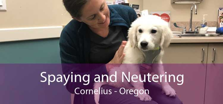Spaying and Neutering Cornelius - Oregon