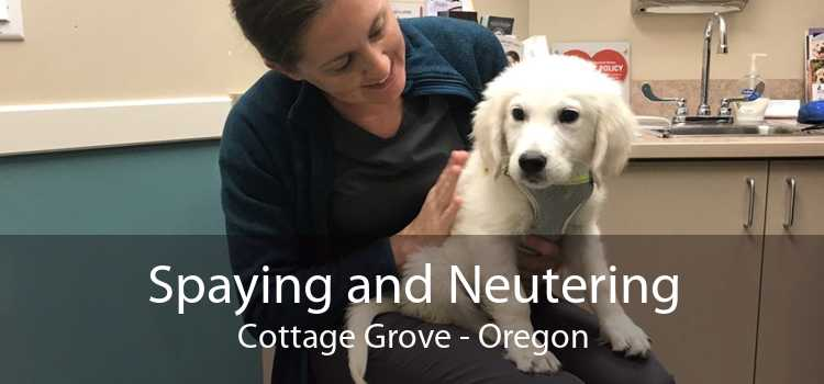 Spaying and Neutering Cottage Grove - Oregon