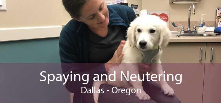 Spaying and Neutering Dallas - Oregon