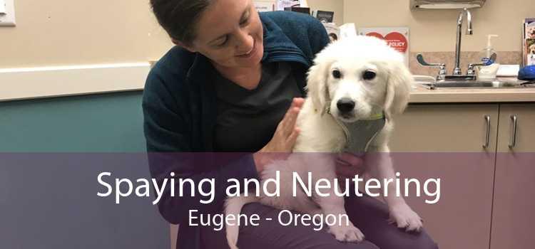 Spaying and Neutering Eugene - Oregon