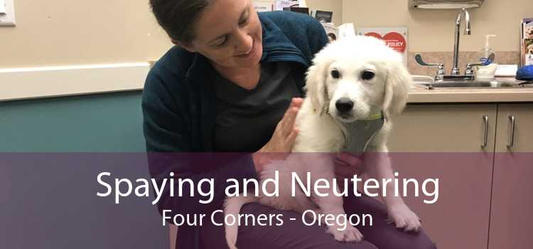 Spaying and Neutering Four Corners - Oregon