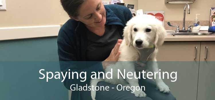 Spaying and Neutering Gladstone - Oregon