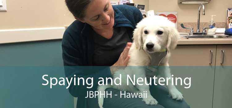 Spaying and Neutering JBPHH - Hawaii
