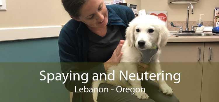Spaying and Neutering Lebanon - Oregon