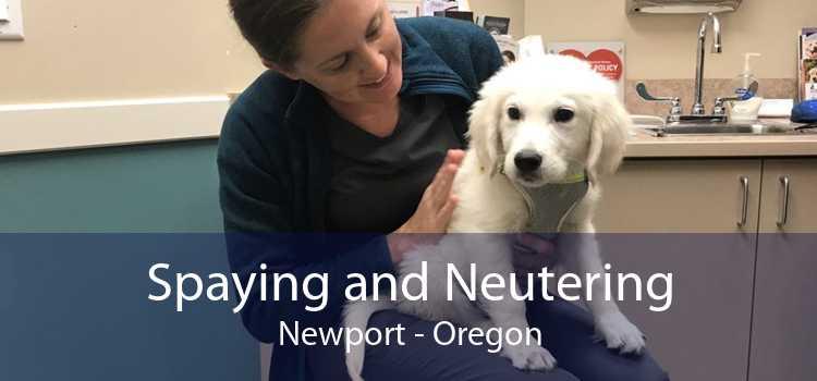 Spaying and Neutering Newport - Oregon