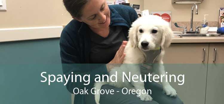 Spaying and Neutering Oak Grove - Oregon