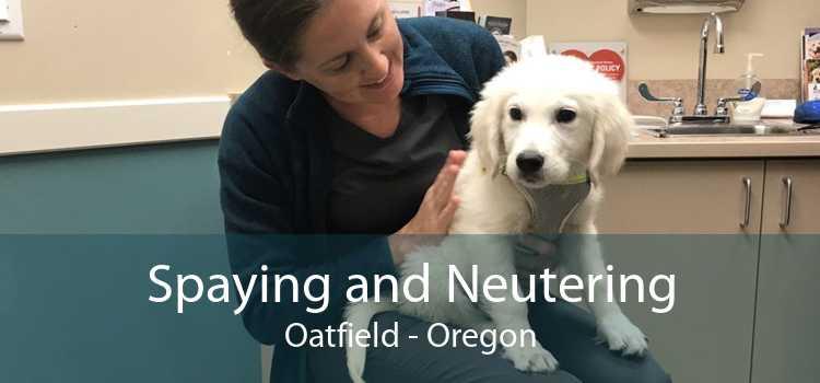 Spaying and Neutering Oatfield - Oregon