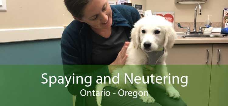 Spaying and Neutering Ontario - Oregon