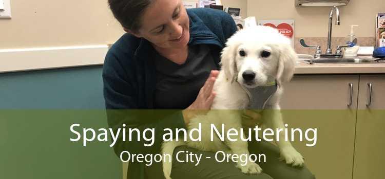 Spaying and Neutering Oregon City - Oregon