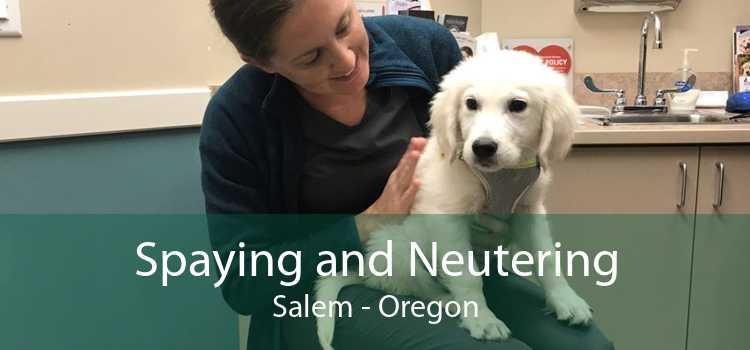 Spaying and Neutering Salem - Oregon