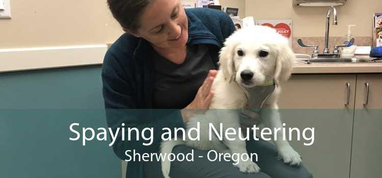 Spaying and Neutering Sherwood - Oregon
