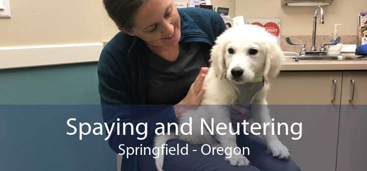 Spaying and Neutering Springfield - Oregon