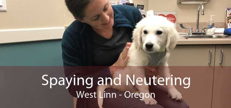 Spaying and Neutering West Linn - Oregon
