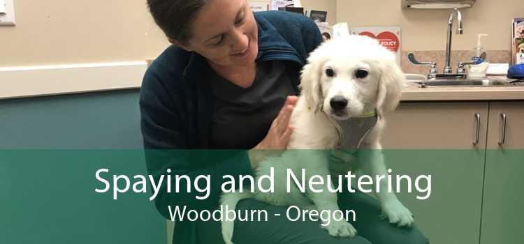 Spaying and Neutering Woodburn - Oregon